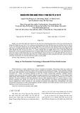 Nghiên cứu công nghệ trích ly tinh dầu từ lá tía tô