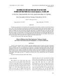 Ảnh hưởng của thời gian phun đạm lên sự phát triển và năng suất đậu phộng HL25 (Arachis hypogaeaL.) tại nhà lưới