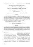 Xây dựng quy trình vi nhân giống cây Ngọc Hân (Angelonia goyazenzsis Benth)