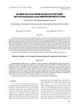 Ảnh hưởng của sự thay đổi nồng độ muối lên sự tăng trưởng của vi tảo Nannochloropsis oculata trong điều kiện nuôi cấy in vitro