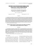 Quang hợp và tích lũy chất khô của một số giống cao lương (Sorghum bicolor (L.) Moench) trong điều kiện hạn