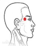 Tự học chữa bệnh day bấm huyệt - Bệnh về tai