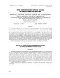 Nghiên cứu chuyển gene mẫn cảm Auxin (INO-Rolb) vào giống quýt Đường Canh và cam Vinh