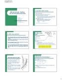 Bài giảng Mô hình bề mặt - Surface các phương pháp xây dựng
