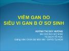 Bài giảng Viêm gan do siêu vi gan B ở sơ sinh - Huỳnh Thị Duy Hương