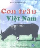 Tìm hiểu về Con trâu Việt Nam: Phần 2