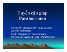 Bài giảng Tuyến cận giáp - Parahorrmon