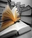 Giáo án bài: Viết bài tập làm văn số 1, văn thuyết minh - GV. Trương Thị Hồng Dịu