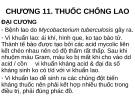 Bài giảng Chương 11: Thuốc chống lao