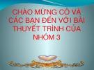 Bài thuyết trình: Tài nguyên khoáng sản Việt Nam