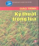 Giáo trình Kỹ thuật trồng lúa (dùng trong các trường trung học chuyên nghiệp): Phần 1