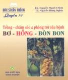 Ebook Bác sĩ cây trồng quyển 19 - Trồng, chăm sóc và phòng trừ sâu bệnh bơ, hồng, bòn bon: Phần 2