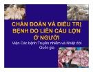 Bài giảng Chẩn đoán và điều trị bệnh do liên cầu lợn ở người