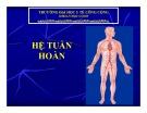 Bài giảng Hệ tuần hoàn (48tr)