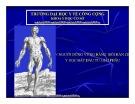 Bài giảng Giới thiệu về giải phẫu học người