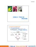 Bài giảng Chương 5: Trao đổi Protein