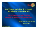 Bài giảng Các phương pháp điện di và chuyển lên màng lai trong phân tích -  Trần Nhật Phương
