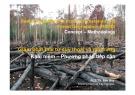 Bài giảng Giảm phát thải từ suy thoái và mất rừng: Khái niệm và phương pháp tiếp cận - PGS.TS. Bảo Huy