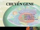 Bài giảng Chuyển gene - Nguyễn Thái Thủy