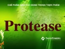 Bài giảng Chế phẩm sinh học dùng trong thực phẩm: Protease