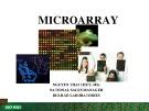 Bài giảng Microarray