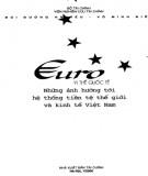 Ebook Euro - Vị thế quốc tế, những ảnh hưởng tới hệ thống tiền tệ thế giới và kinh tế Việt Nam: Phần 1
