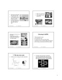 Bài giảng Hóa sinh thực phẩm 1: Chương 8 - ThS. Phạm Hồng Hiếu
