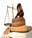 Các quy định pháp luật hiện hành