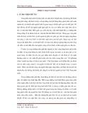 Tóm tắt Khóa luận tốt nghiệp: Thực trạng phát triển du lịch tại di tích lịch sử - văn hóa Tháp Bà Pô Nagar, thành phố Nha Trang, tỉnh Khánh Hòa