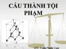 Bài giảng Luật Hình sự: Chương 4 - Trần Ngọc Lan Trang