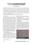 Nguyên nhân gây nứt và giải pháp giảm nứt cho bê tông và bê tông cốt thép các công trình bảo vệ bờ biển