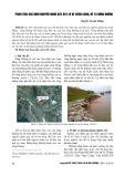 Phân tích xác định nguyên nhân gây sạt lở kè Xuân Canh, Đê Tả sông Đuống