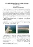 Nghiên cứu ảnh hưởng của đê ngầm và bãi đê đến hiệu quả giảm sóng trên mô hình vật lý