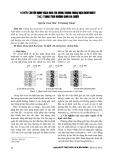 Nghiên cứu ổn định vách hào thi công trong dung dịch bentonite theo trạng thái không gian ba chiều