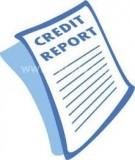 Báo cáo: Quy hoạch tổng thể phát triển kinh tế, xã hội huyện Chư Pưh 2011-2012