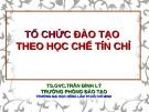 Bài giảng Tổ chức đào tạo theo học chế tín chỉ - TS.GVC. Trần Đình Lý