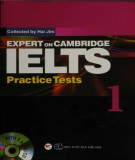 Expert on Cambridge IELTS practice test 1: Part 2
