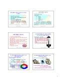 Bài giảng Quản lý chất lượng HACCP