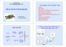 Bài giảng Một số vấn đề về đô thị sinh thái - Nguyễn Minh Kỳ