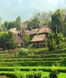 Nghiên cứu mô hình du lịch cộng đồng ở Việt Nam