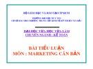 Bài tiểu luận: Vai trò của marketing trong việc ổn định thương hiệu kem đánh răng p/s của unilever tại thị trường Việt Nam