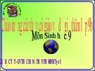 Bài giảng môn Sinh học 9: Ô nhiễm môi trường - Trần Thị Minh Tươi
