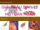 Bài thuyết trình Giải phẫu sinh lý hệ tuần hoàn
