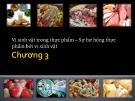 Bài giảng Vi sinh thực phẩm: Chương 3 - Nguyễn Minh Hiền