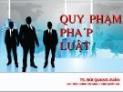 Bài giảng Quy phạm pháp luật: Những vấn đề chung về pháp luật - TS. Bùi Quang Xuân