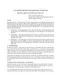 Các trường hợp phân tích kinh tế dự án thủy lợi hồ chứa Chóp Vung tiểu dự án Trà Câu - PGS. TS Ngô Thị Thanh Vân
