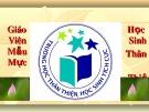 Bài giảng Chuyên đề: Tích hợp giáo dục kỹ năng sống ở trường THCS - Hoàng Sơn