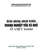 Ebook Giải pháp phát triển doanh nghiệp vừa và nhỏ ở Việt Nam: Phần 2