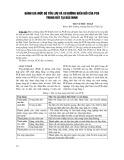 Đánh giá mức độ tồn lưu và xu hướng biến đổi của PCB trong đất tại Bắc Ninh