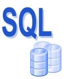 Tổng quan về ngôn ngữ SQL